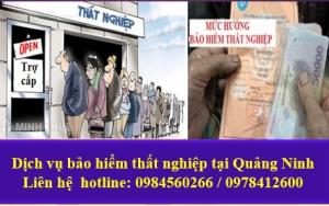 Dịch vụ hưởng bảo hiểm thất nghiệp tại Quảng Ninh