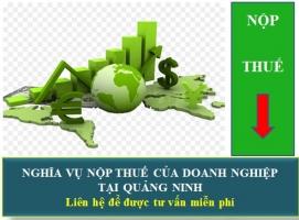 Nghĩa vụ Nộp Thuế Của Doanh Nghiệp Tại Quảng Ninh